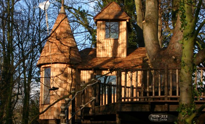 BlueForest_TreeHouse_2_The_Enchanted_Forest_gallery-image